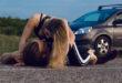 Dogging-mania, i luoghi preferiti dai dogger